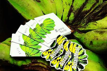 141108greenbananas.jpg