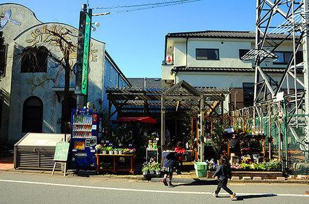 150201hakeichi01.jpg